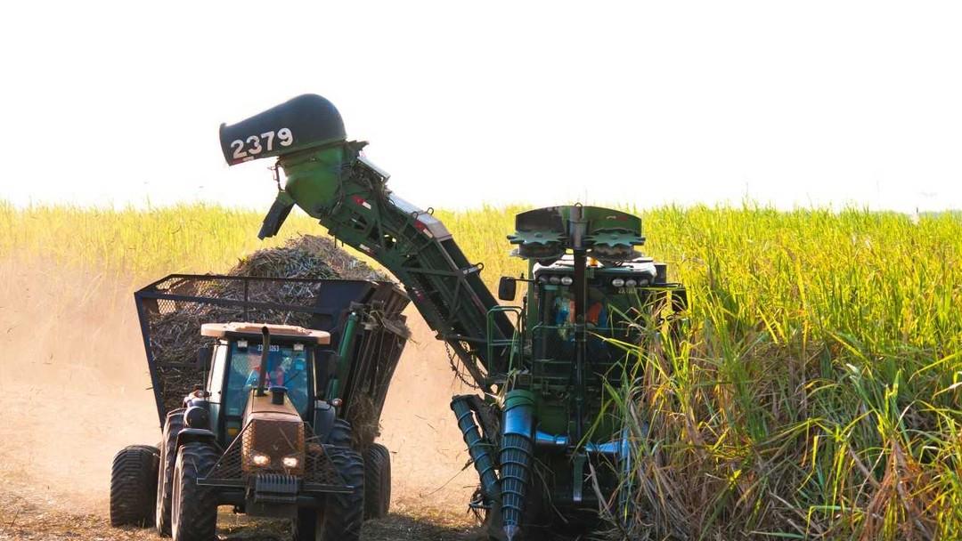 G1 Agro - É pop. E tem notícias sobre terra edbce62c452