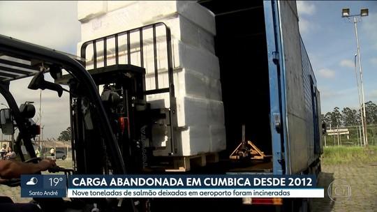 Carga de 10 toneladas de peixe mantida por 5 anos em Cumbica é incinerada em SP