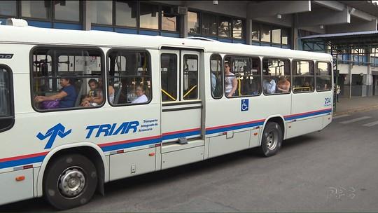 Ônibus do transporte coletivo de Araucária passam a ter tarifa gratuita aos domingos