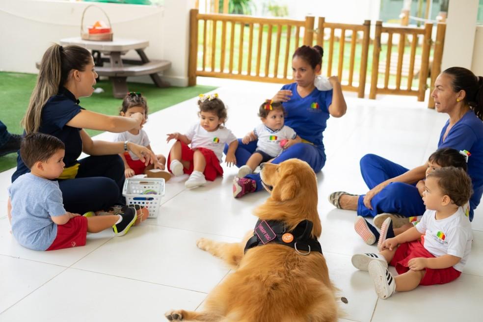 Professoras e alunos participam de atividades com animais na escola — Foto: Divulgação