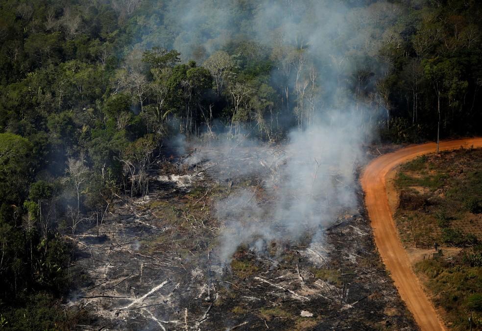 Área devastada nas imediações de Porto Velho, cidade com mais alertas de queimadas registrados de janeiro a agosto na Amazônia Legal — Foto: Bruno Kelly/Reuters