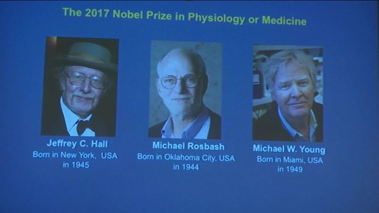 Trio leva Nobel de Medicina por pesquisa sobre relógio biológico