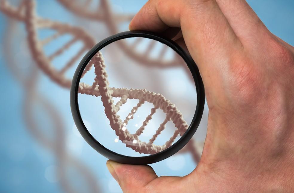 Mapeamento genético — Foto: Divulgação