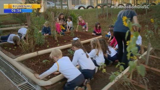 Conheça os projetos que aliam atividade física, alimentação saudável e engajamento social em SC