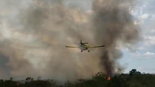 Incêndio atinge vegetação em Ibicoara, na Chapada Diamantina; VÍDEO