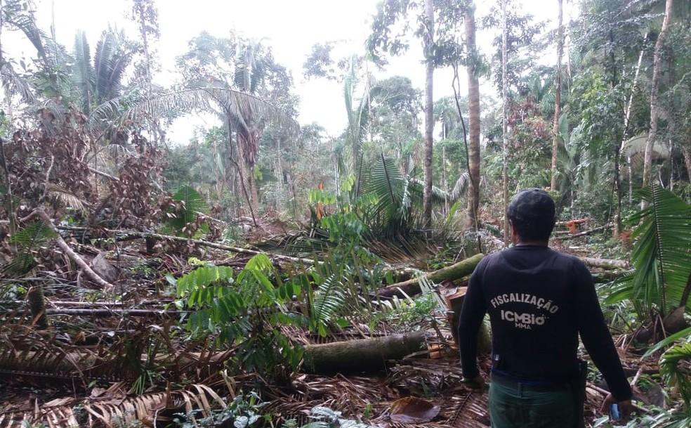 Funai conta com o apoio de outras instituições e órgãos, como equipes do ICMBio. — Foto: Funai/Divulgação