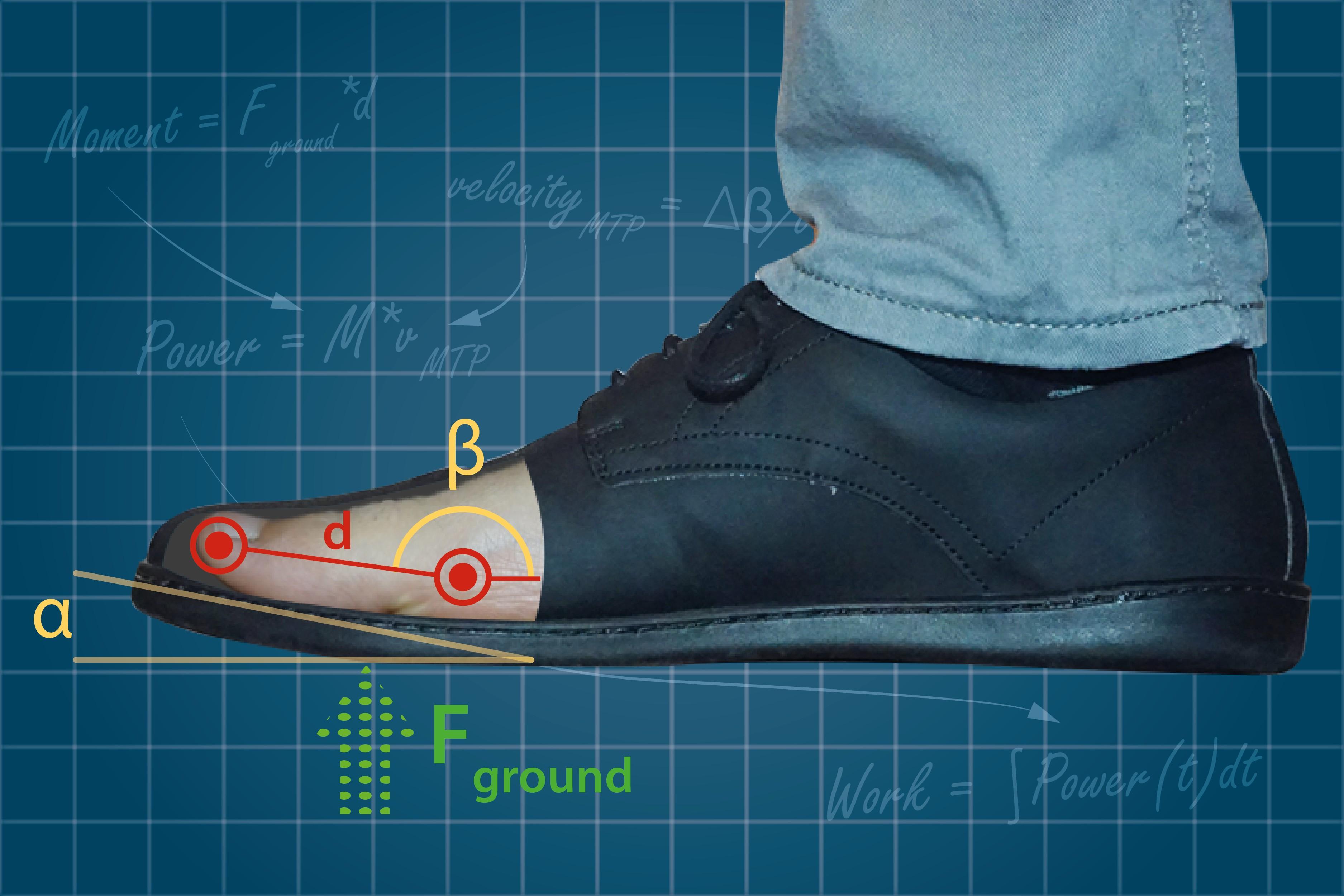 Sapatos com ponta 'curva' podem enfraquecer músculos do pé, diz pesquisa de Harvard
