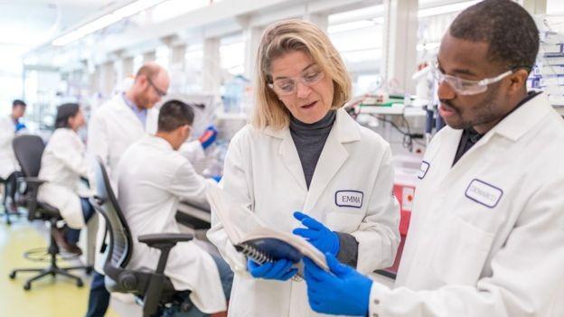 Diretora da biofarmacêutica BMS acredita que até 2030, 70% dos casos de câncer serão tratados com imunoterapia (Foto: ROBERT BRUSCHINI via BBC News)