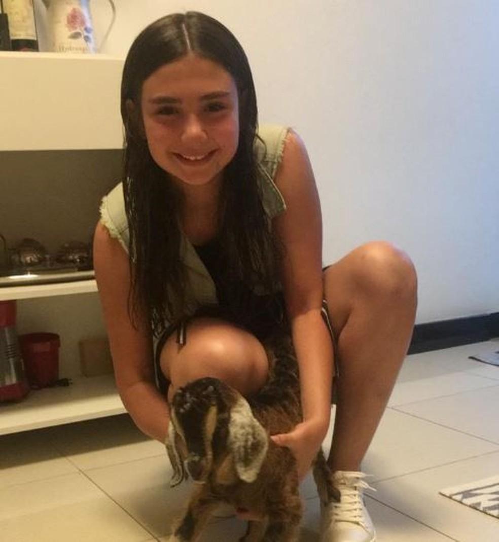 Cabrito foi entregue para garota na véspera de Natal, em Itapetininga — Foto: Arquivo Pessoal/Ana Clara Medeiros
