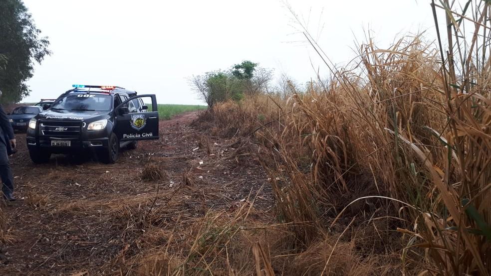 Corpo foi encontrado em uma área de canavial na região de Ibitinga — Foto: Polícia Civil / Divulgação