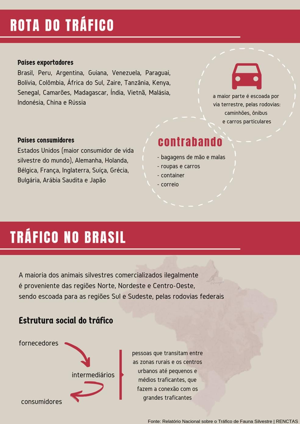 O contrabando de grande porte pode envolver grandes comerciantes brasileiros e estrangeiros — Foto: Arte/TG