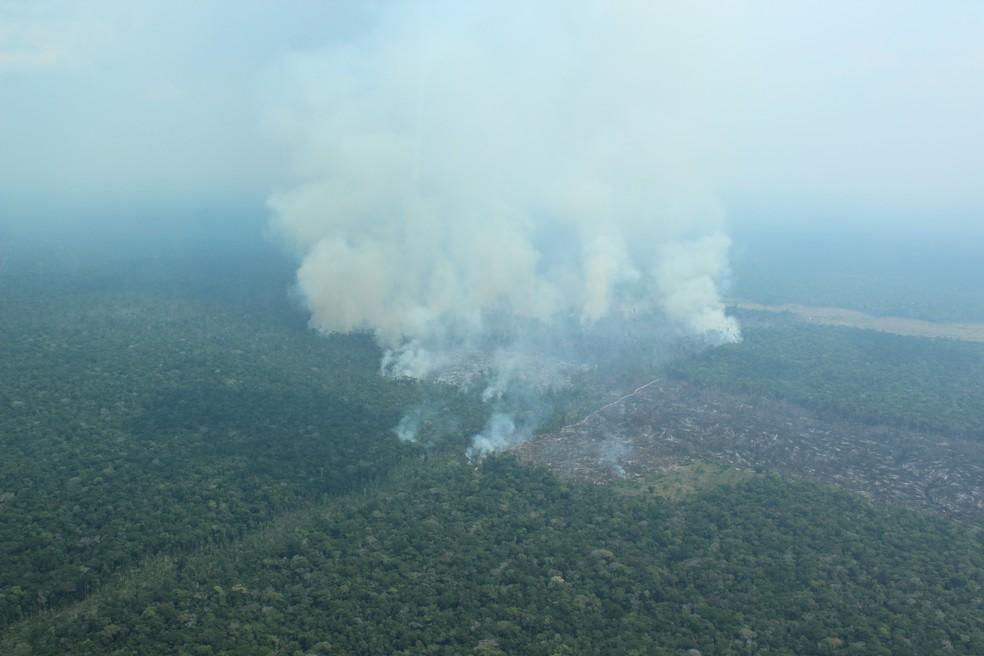 Queimada atinge área de floresta no sul do Amazonas — Foto: Jonatas Boni/G1