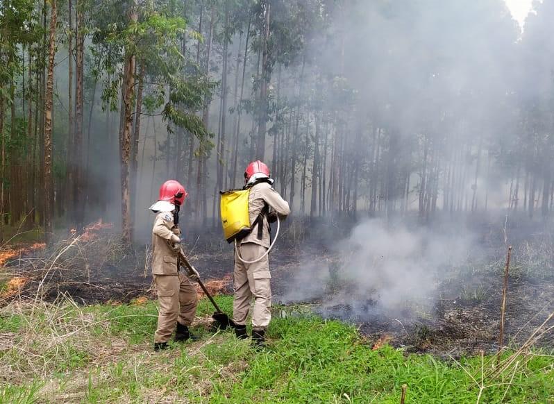 Governo federal decreta situação de emergência devido aos incêndios florestais em MT