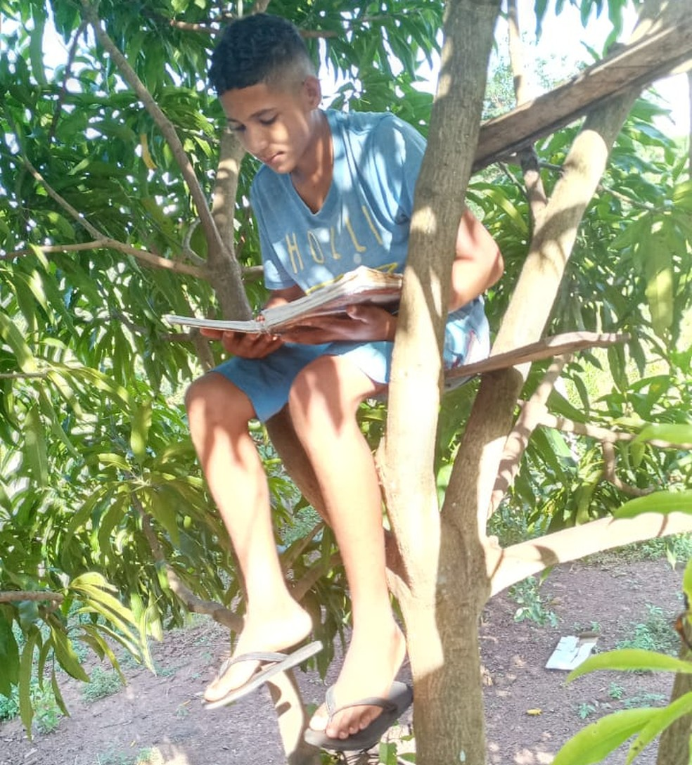 Adolescente de 15 anos driblou dificuldades para não perder aula — Foto: Lúcia Ribeiro/Arquivo Pessoal