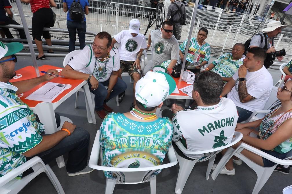 Integrantes da Mancha Verde acompanham apuração do Carnaval de São Paulo — Foto: Celso Tavares/G1