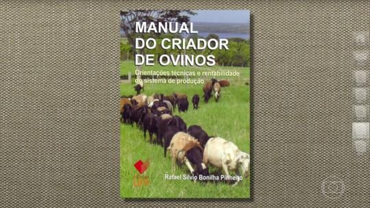 Veja informações sobre confinamento de carneiros