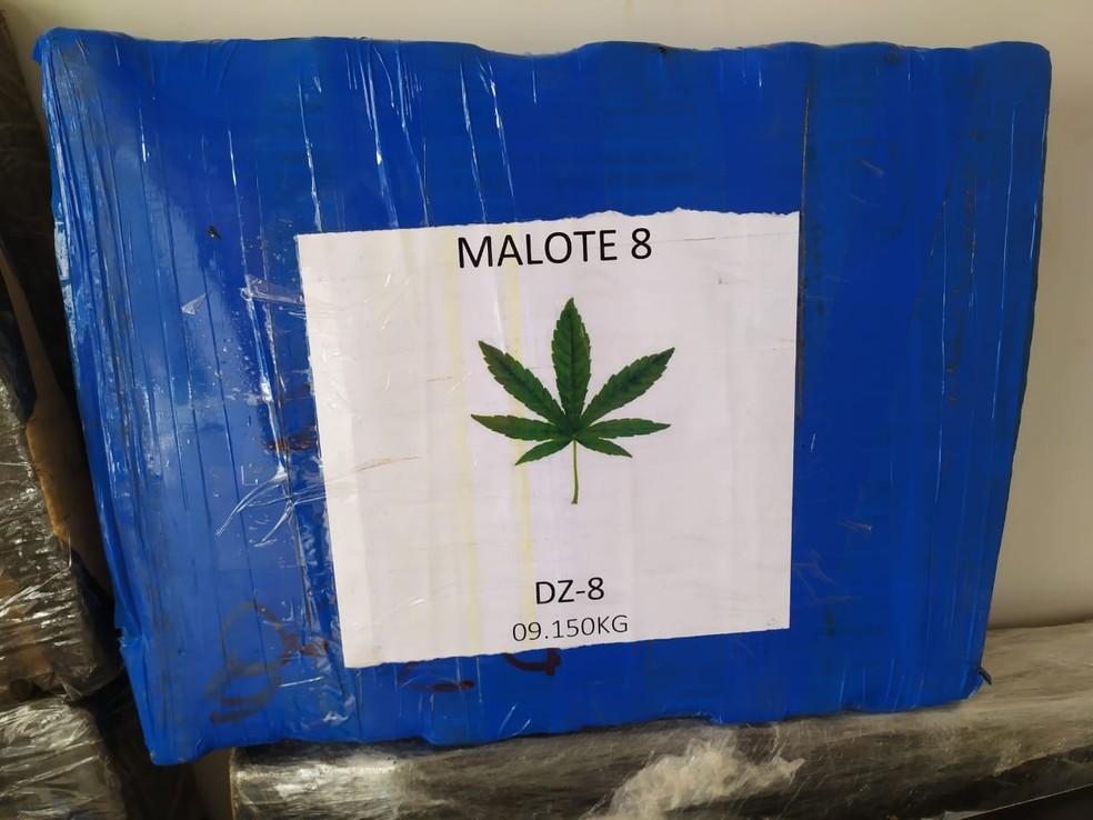 Malotes de maconha estavam identificados com peso e siglas, que, segundo a polícia, seriam para identificar os compradores — Foto: Carlos da Cruz/TV Morena