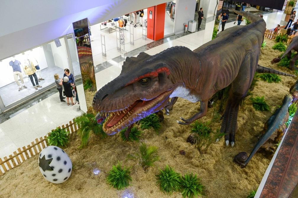 Visitação pode ser feita até este sábado (21) em Jundiaí — Foto: Divulgação/Jundiaí Shopping