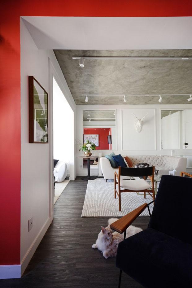 Sala vermelha é destaque no apartamento de um jovem e três gatos (Foto: Divulgação)