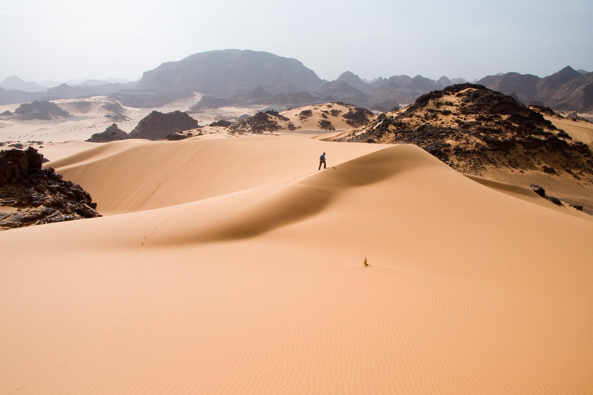 Deserto do Saara (Foto: Wikimedia/I, Luca Galuzzi)