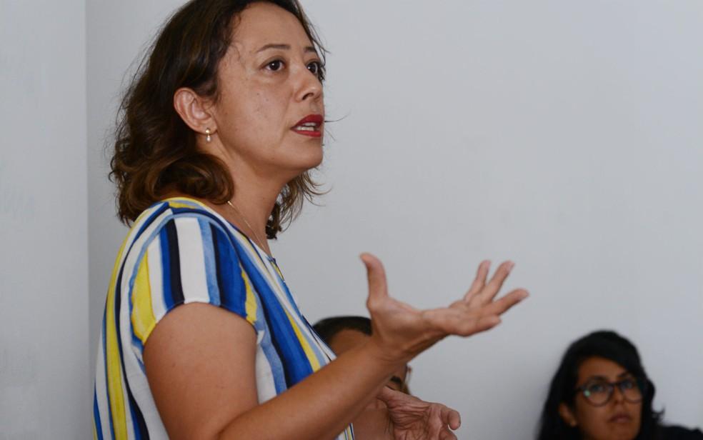 A professora de Artes da UnB Cinara Barbosa é idealizadora e curadora do projeto BSB Plano das Artes — Foto: BSB Plano das Artes/Divulgação