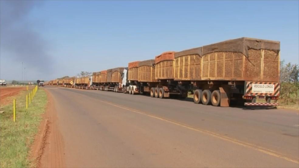 Fila de caminhões se formou em usina de Nova Independência  — Foto: Reprodução/TV TEM