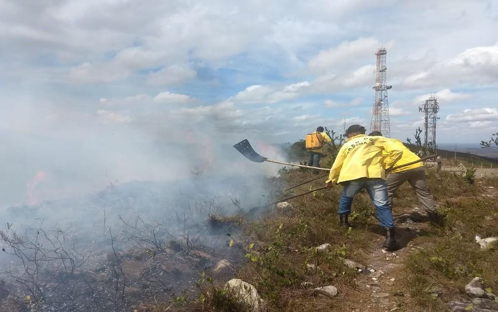 Brigadistas tentam conter incêndio na Serra de Itabaiana — Foto: Marleno Costa/Divulgação