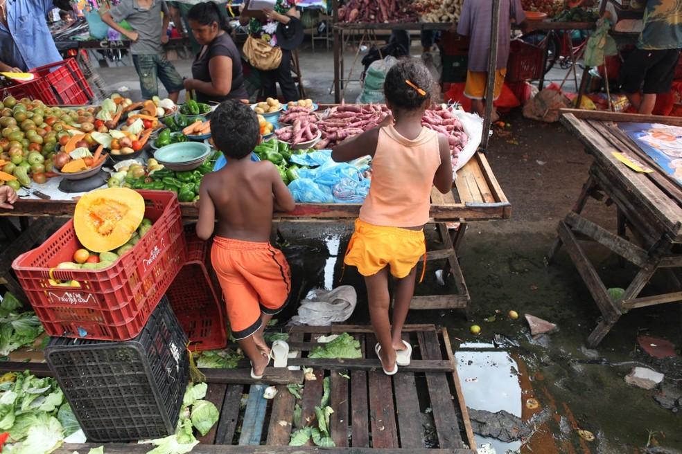 Operação em cidades do Ceará flagra crianças em trabalho infantil ilegal — Foto: TV Verdes Mares/Reprodução