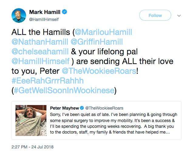 O ator Mark Hamill prestando solidariedade ao amigo Peter Mayhew (Foto: Twitter)