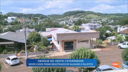 Duas cidades do Oeste catarinense identificam pacientes com dengue