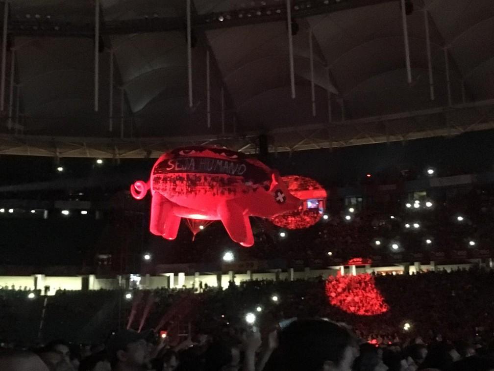 Porco usado durante apresentação de Roger Waters em Salvador  — Foto: Alan Oliveira/G1