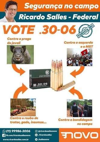 Material de campanha de Ricardo Salles, então candidato a deputado federal  (Foto: Reprodução)