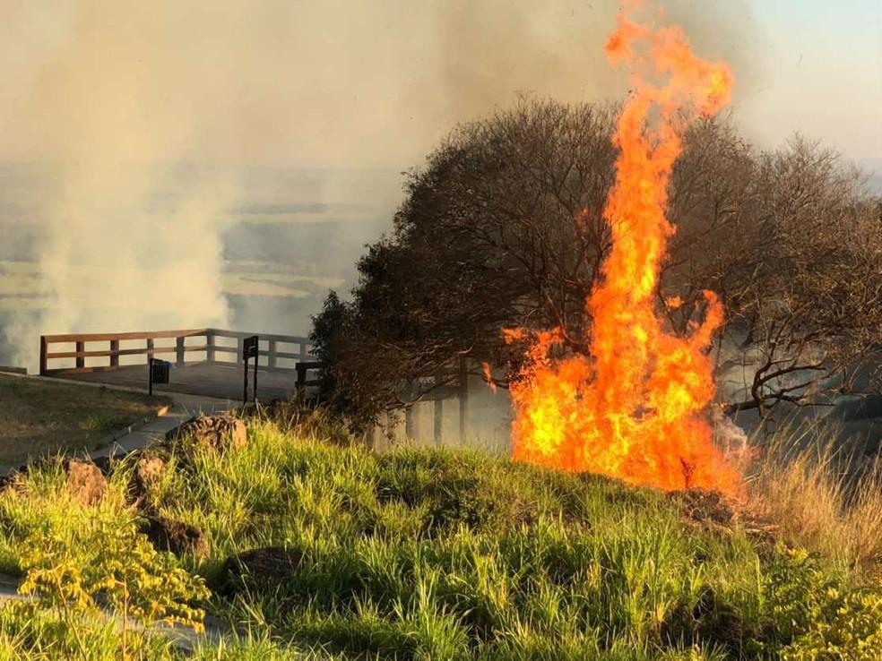 Incêndio em mata perto do mirante de São Pedro, cidade turística da região de Piracicaba — Foto: Erika Cerezer