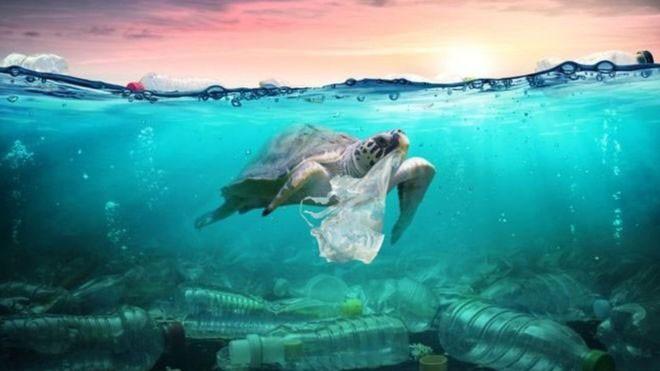 A Era do Plástico: o uso do material pode marcar o inicio do Antropoceno? - Notícias - Plantão Diário