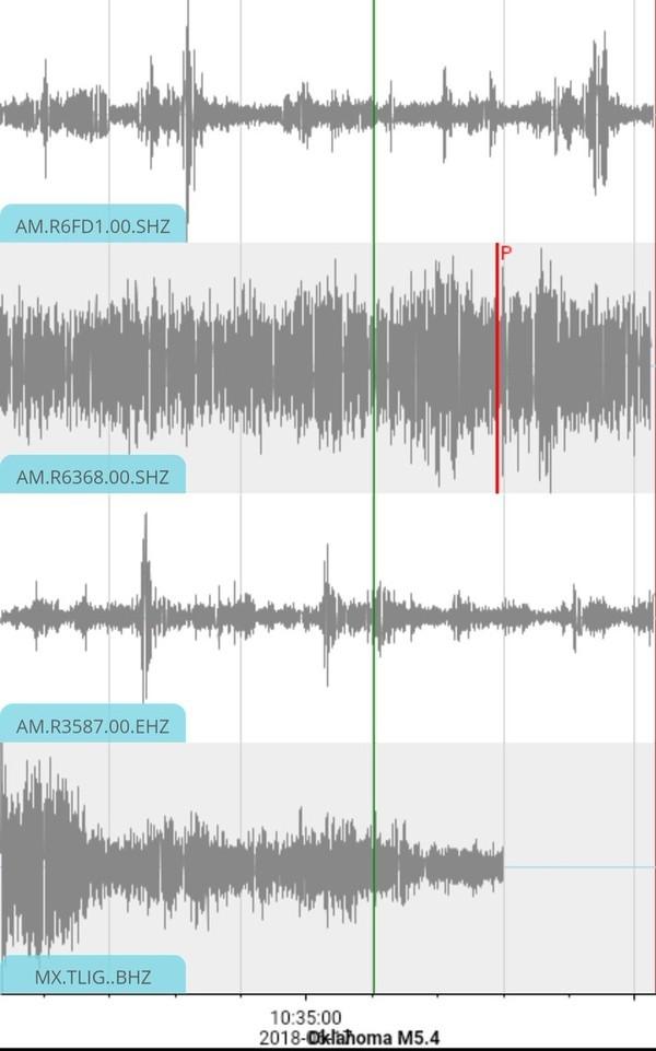 Sismógrafo indica a atividade tectônica durante a comemoração do gol no México (Foto: Reprodução)