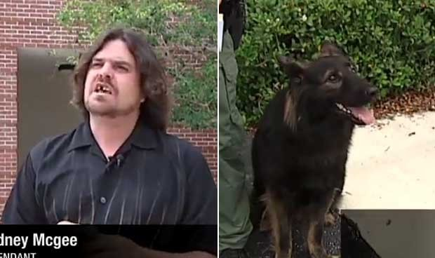 Rodney McGee 'intimou' um cão policial para depor como sua testemunha de defesa.  (Foto: Reprodução)