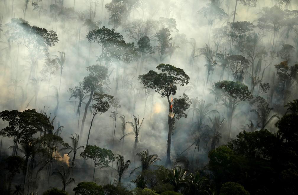 Fumaça sobe durante incêndio em uma área da floresta amazônica perto de Porto Velho (RO) em 10 de setembro de 2019 — Foto: Bruno Kelly/Reuters/Arquivo