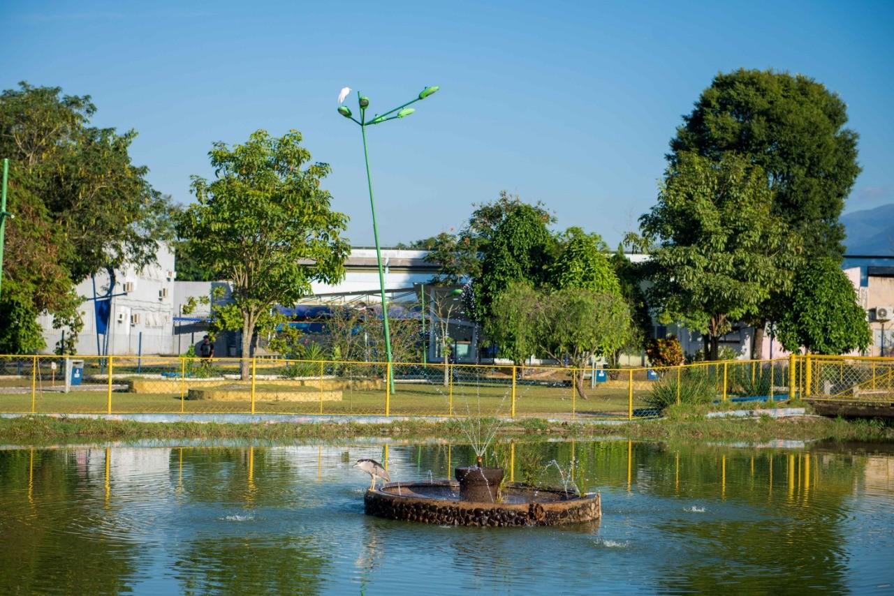 'Semana da Árvore' terá programação com atividades ligadas à natureza em Resende  - Notícias - Plantão Diário