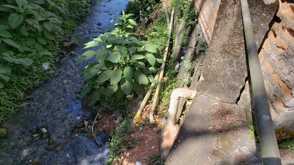 Esgoto de Ouro Preto  é lançado diretamente nos córregos. — Foto: Thais Pimentel/G1