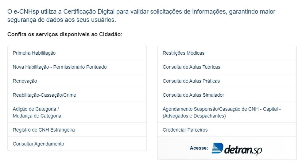 Esses são os serviços disponíveis no sistema e-CNH São Paulo  — Foto: Reprodução