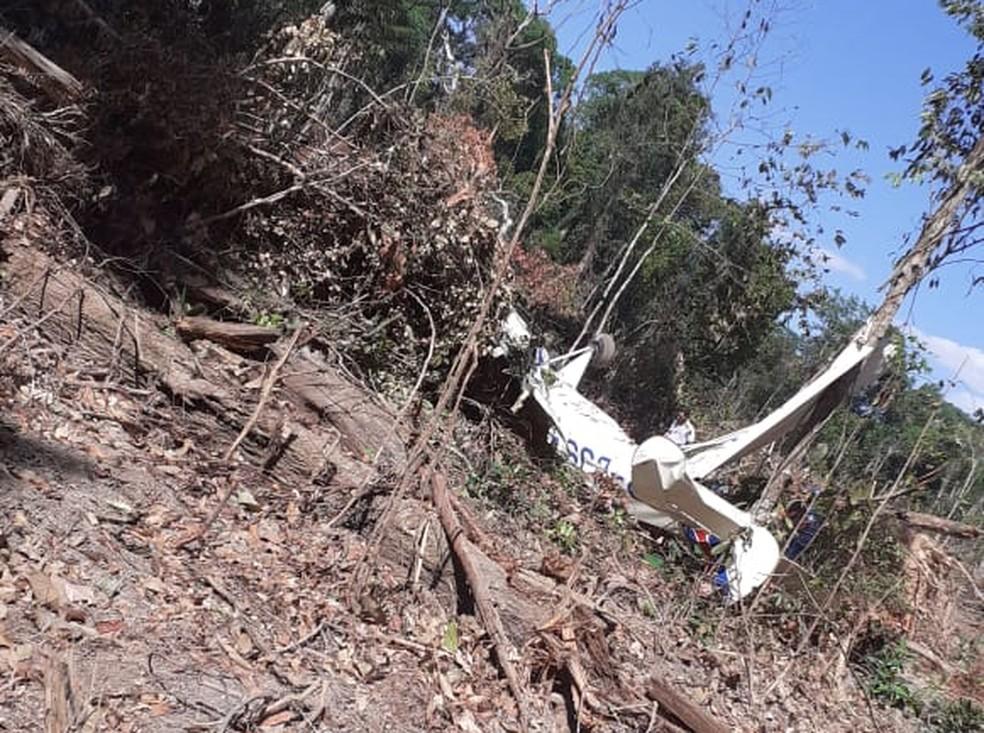Avião caiu em área de mata — Foto: Divulgação