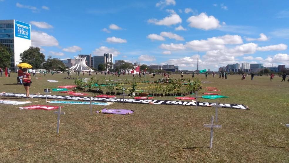 Entidades fazem manifestação em defesa do meio ambiente, no DF — Foto: Arquivo pessoal