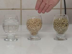 Além da jabuticaba, a receita leva água, lúpulo e cevada  (Foto: Reprodução / TV TEM)