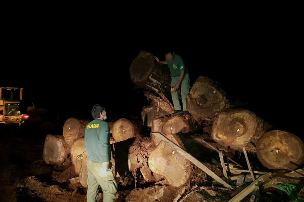 Operação Warã — Foto: Ibama/Assessoria