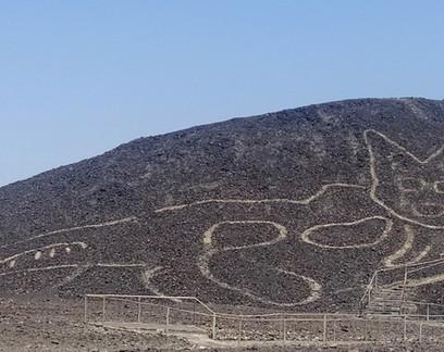Geoglifo de gato de 2 mil anos é encontrado em Nazca, no Peru