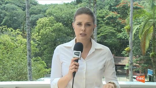 Vigilância Epidemiológica investiga suspeita de febre amarela em morte de macaco em Corupá