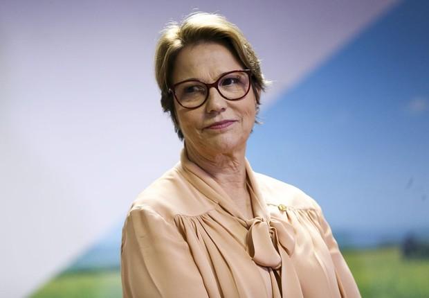 A ministra da Agricultura, Tereza Cristina (Foto: Marcelo Camargo/Agência Brasil)