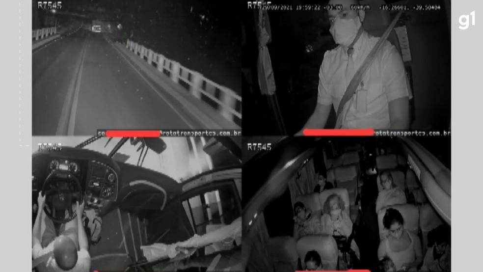 Vídeo mostra momento da batida entre ônibus e caminhão que transportava eucalipto na Bahia — Foto: Reprodução / Redes Sociais
