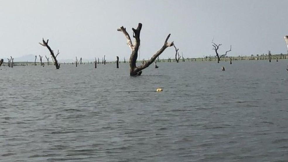 Construção de represa inundou área de Gana que virou a maior reserva aquática já feita pela ação humana — Foto: Dennis Ivers