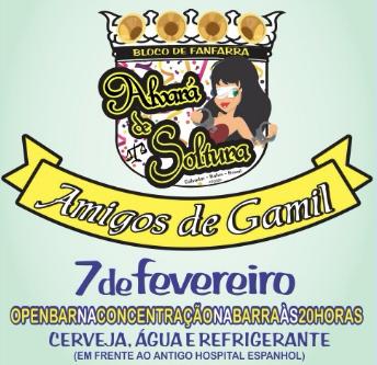 Bloco carnavalesco faz homenagem a advogado de Geddel Vieira Lima (Foto: Reprodução)